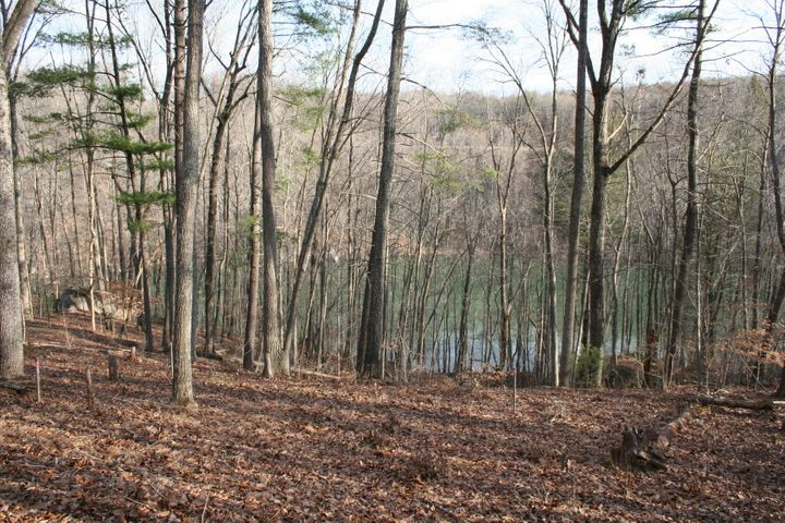 LOT 88 LAKESHORE TERRACE RD, Hardy, VA 24101