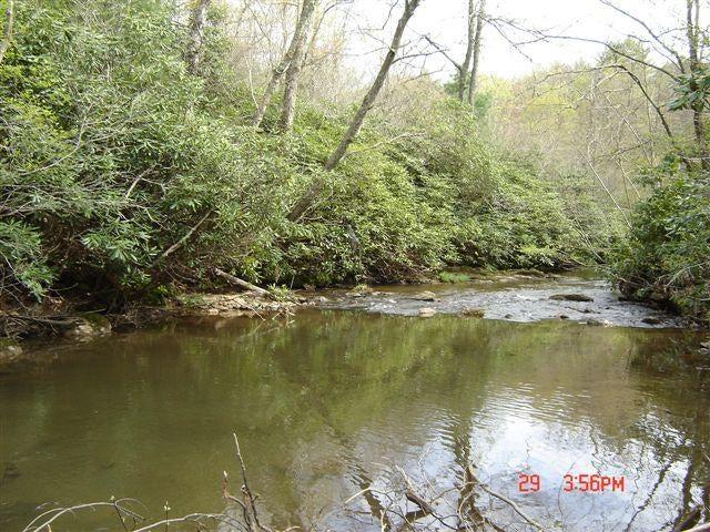 Dan River, HOA common access area