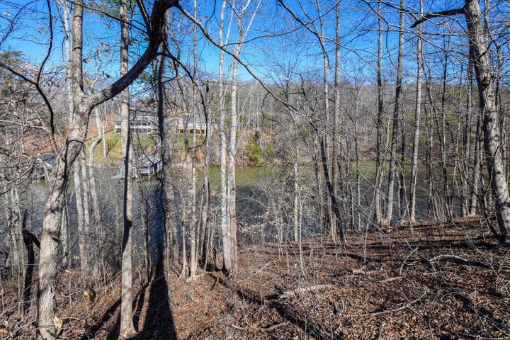 Lot 24 Watchtower DR, Moneta, VA 24121