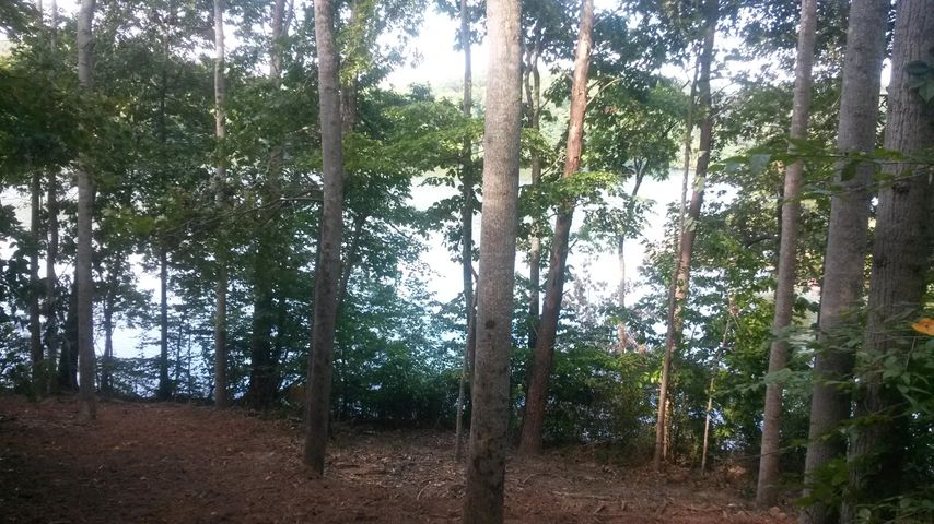 Lot 11 Lakes Edge DR, Goodview, VA 24095