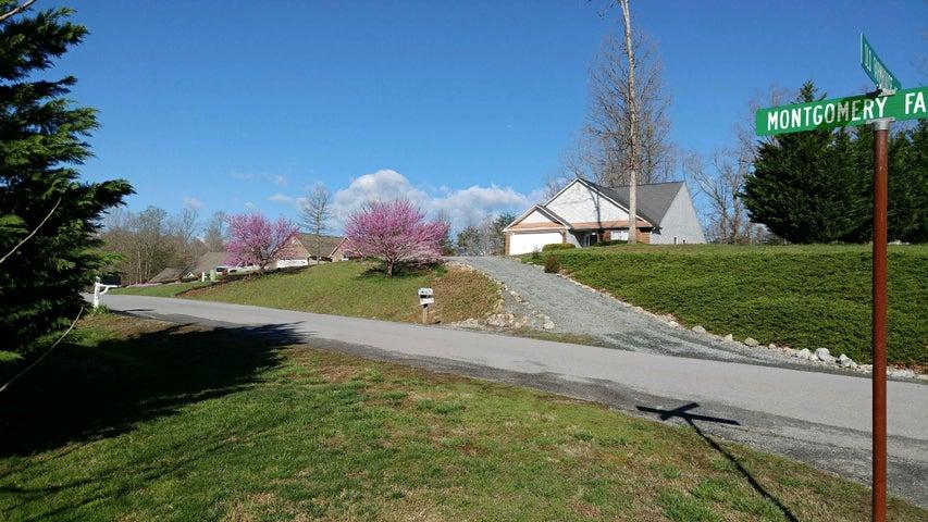 174 Montgomery Farms AVE, Moneta, VA 24121