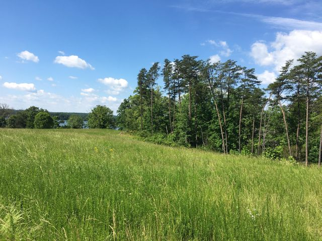 Lot 2 Harbour Island LN, Moneta, VA 24121