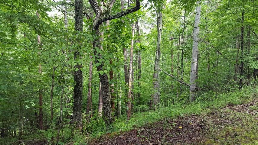 0 Cedar Bluff LN, Hardy, VA 24101