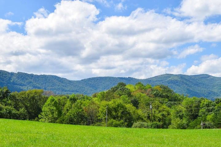 7451 Willow Leaf CIR, Roanoke, VA 24018