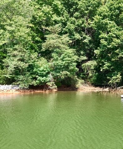 Lot 1 Beech DR, Union Hall, VA 24176