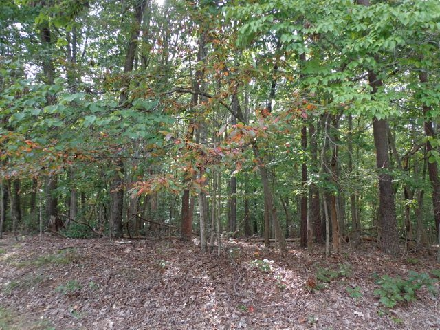 LOT 55 BENT TREE RD, Moneta, VA 24121