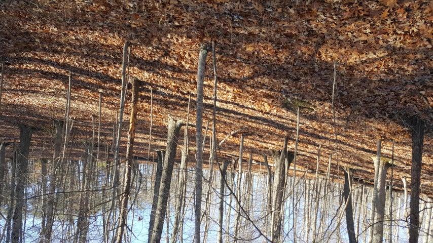 Lot 19 Cedar Bluff LN, Hardy, VA 24101