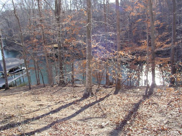 Lot 2 S Pointe Shore DR, Moneta, VA 24121