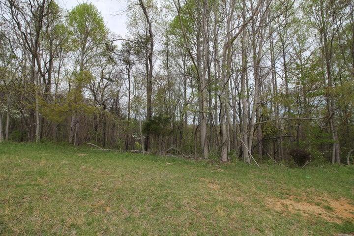 0 Mount Pleasant RD, Shawsville, VA 24162