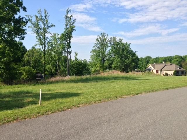 Lot 7 Hammock Pointe DR, Moneta, VA 24121