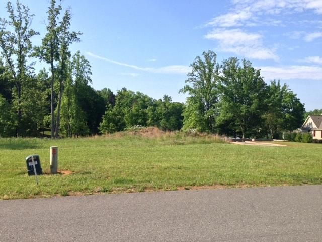 Lot 8 Hammock Pointe DR, Moneta, VA 24121