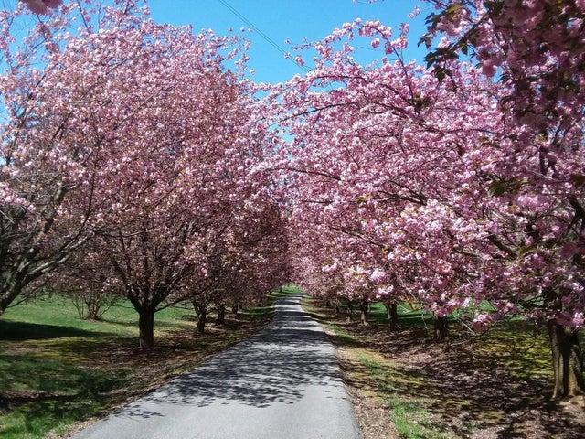 337 Blossom LN, Troutville, VA 24175