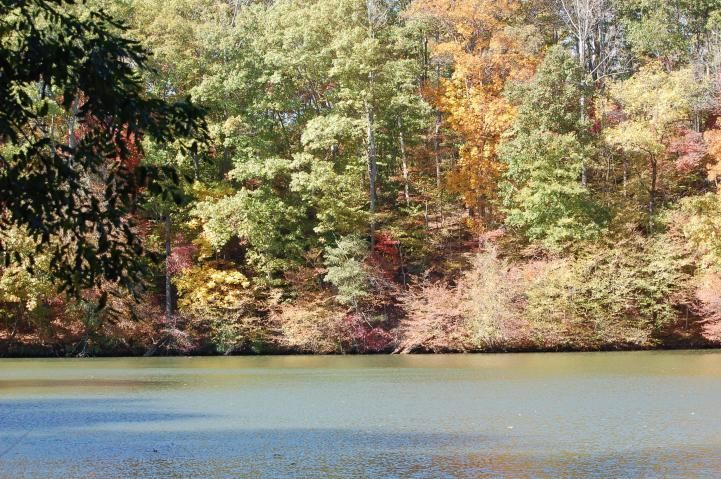Lot 21 Charmwood CIR, Moneta, VA 24121