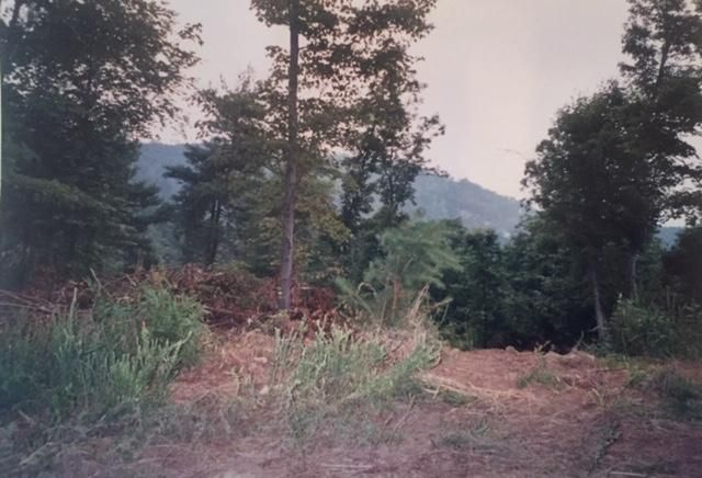 0 Jubal Early Hwy, Hardy, VA 24101