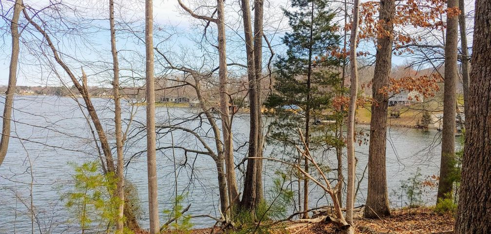 Lot 483 Spur Court DR, Penhook, VA 24137