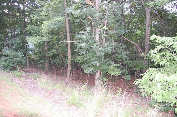 Lot 56 Ridgeway CT, Moneta, VA 24121