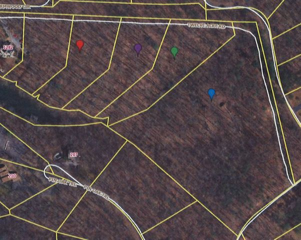 0 Twelve Acre RD, Moneta, VA 24121