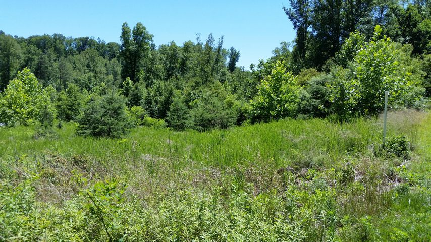Lot 48 Waterside DR, Goodview, VA 24095