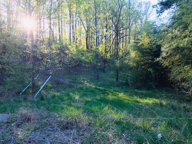0 Merriman & Crystal Creek DR, Roanoke, VA 24018