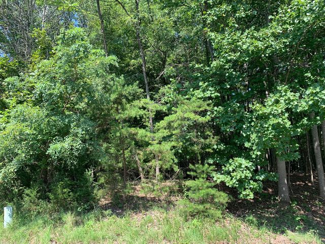 LOT 10 Binnacle DR, Moneta, VA 24121
