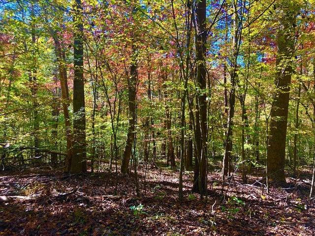 0 Long Pine CT, Moneta, VA 24121