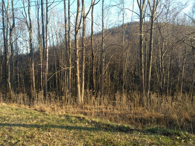 Lot 1 Whispering Heights DR, Hardy, VA 24101
