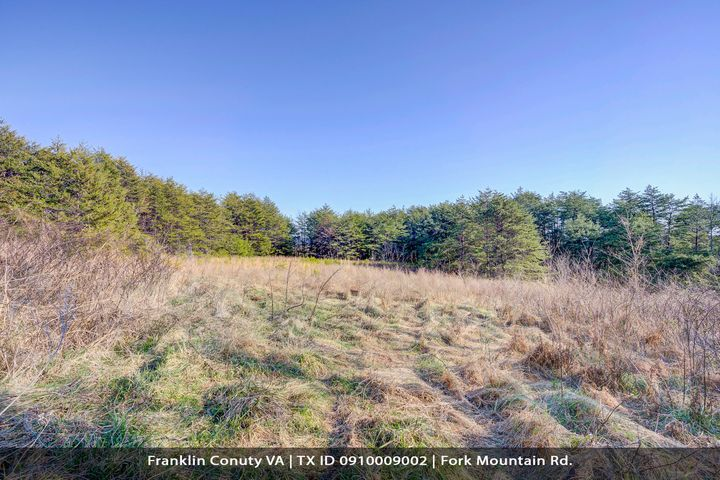 0 Fork Mountain RD, Rocky Mount, VA 24151