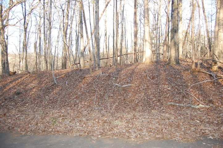 Lot 90 Summerset DR, Moneta, VA 24121
