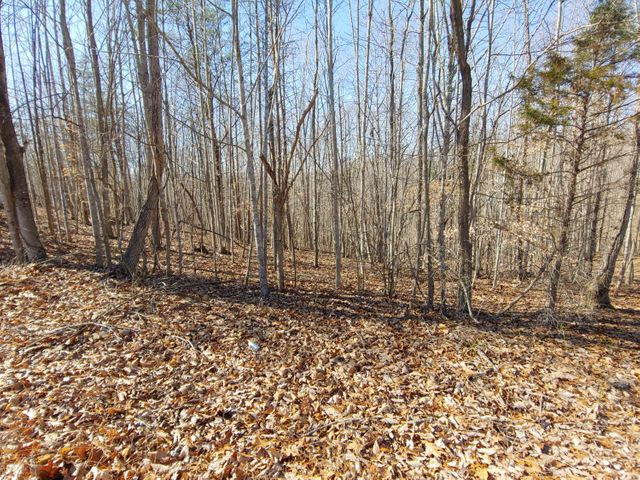 LOT 9 HORSESHOE BEND RD, Goodview, VA 24095