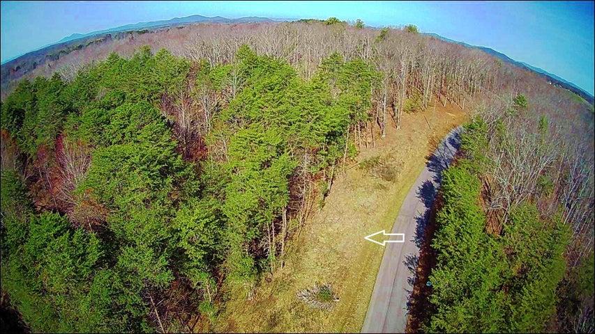 Lot 49 Gap Bridge RD, Moneta, VA 24121