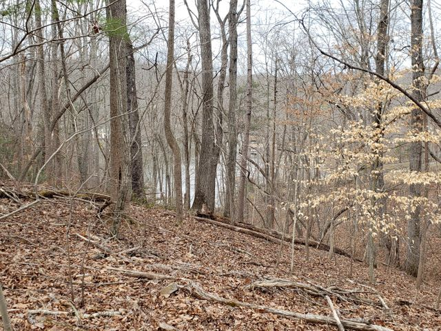 Lot 16 Woodridge TRL, Moneta, VA 24121