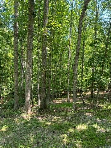 Lot 14 Cedar Bluff LN, Hardy, VA 24101