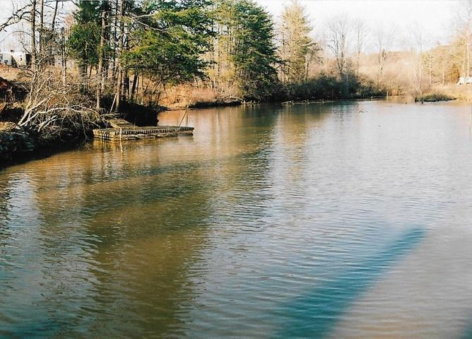 Lot 25 Turning Tide RD, Moneta, VA 24121