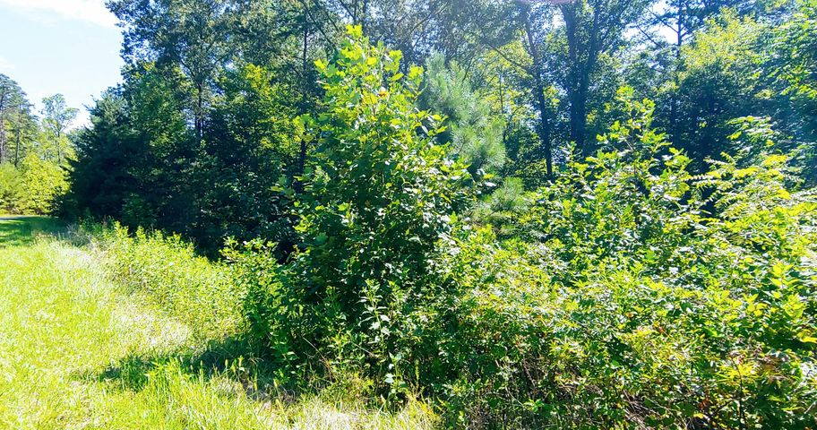 Lot 2 Bridgewater LN, Moneta, VA 24121