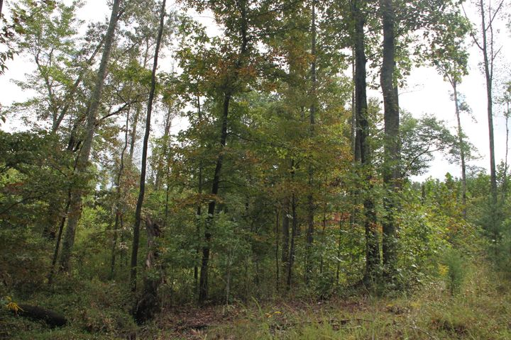 0 Family Acres LN, Bedford, VA 24523