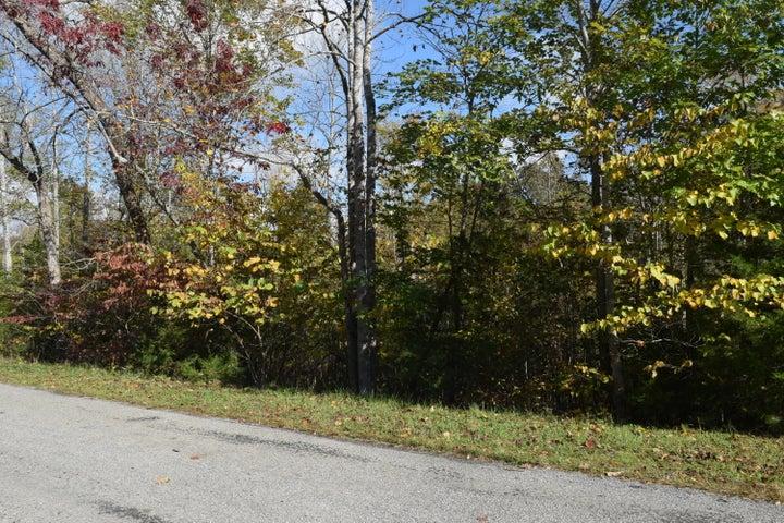 0 Lizard Ridge RD, Bedford, VA 24523