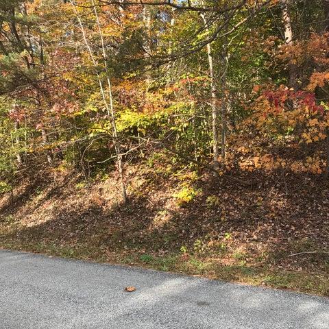 LOT 3 COLES CREEK RD, Rocky Mount, VA 24151