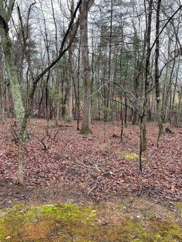 LOT 37 RED FIN LN, Moneta, VA 24121