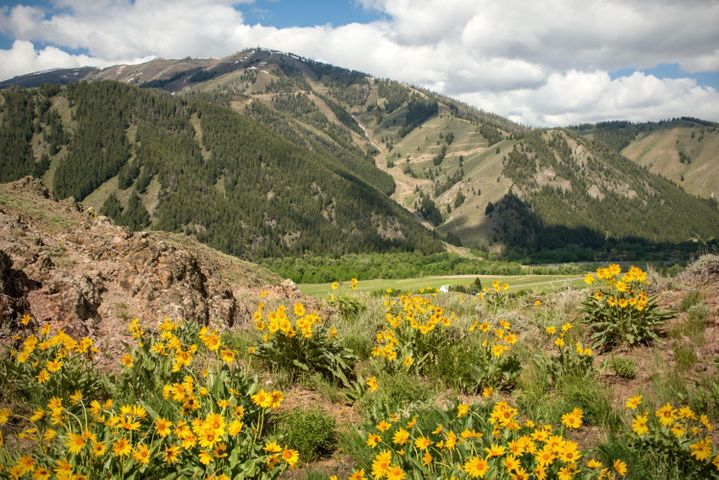 LRN Property Entire Parcel, Sun Valley, ID 83353