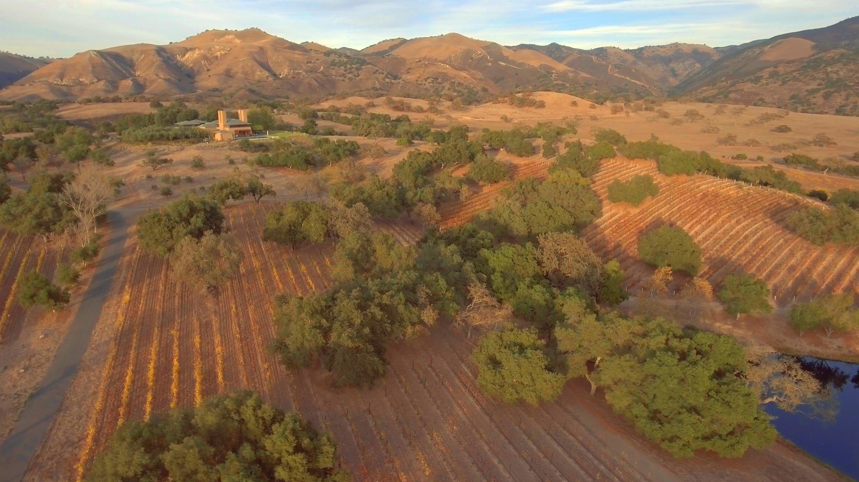 6903 Foxen Canyon Rd Los Olivos, CA 93441