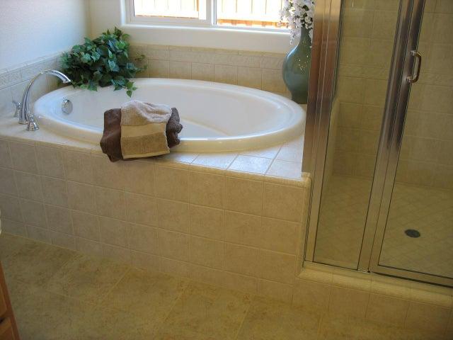 Master Bath Soaking tub& Shower