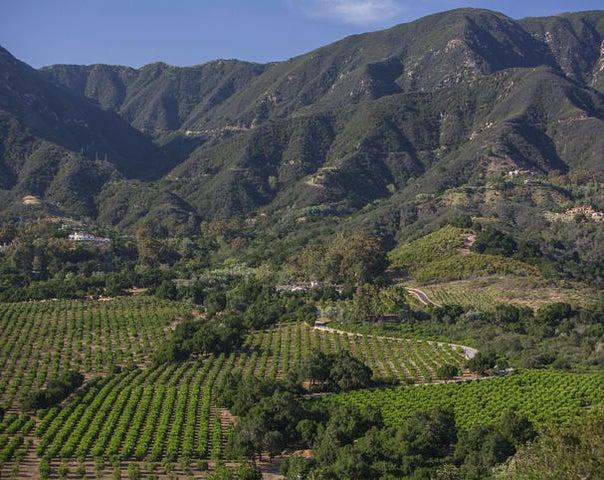 Rancho San Carlos Aerial