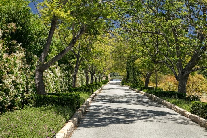 Private Tree-lined Drive