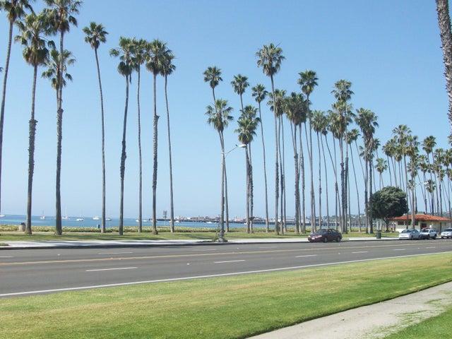 Oceanpalmtrees