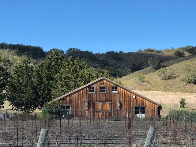 Vineyard in front of barn