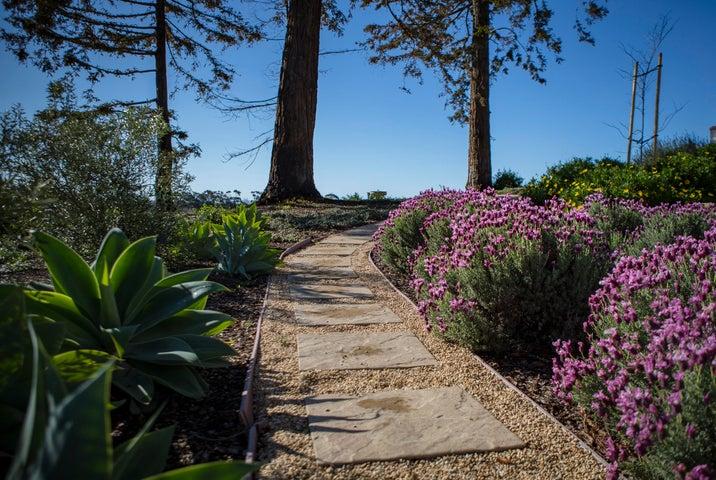 Delightful Landscaping