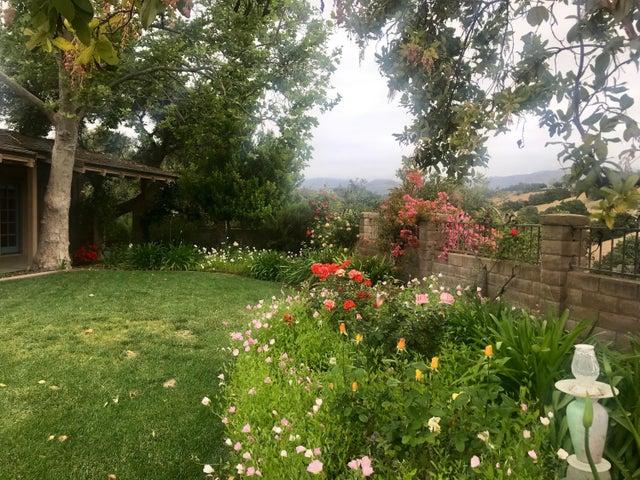 gorgeous yard
