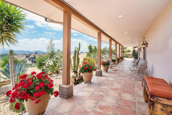 Patio Side of House