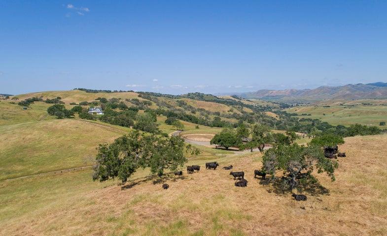 Foxen Creek Ranch0014