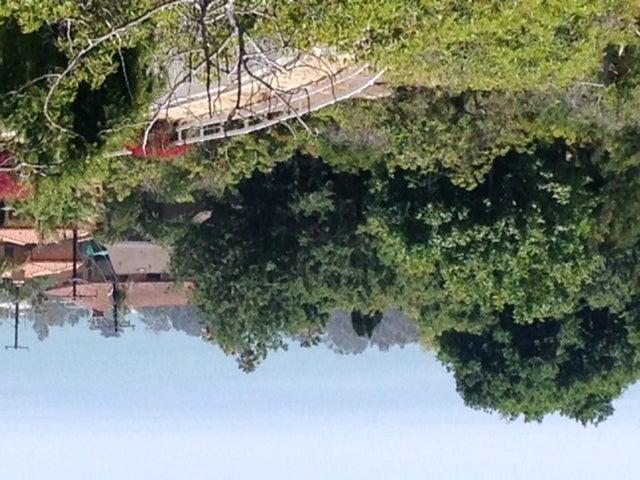 1678 Buena Vista top view down